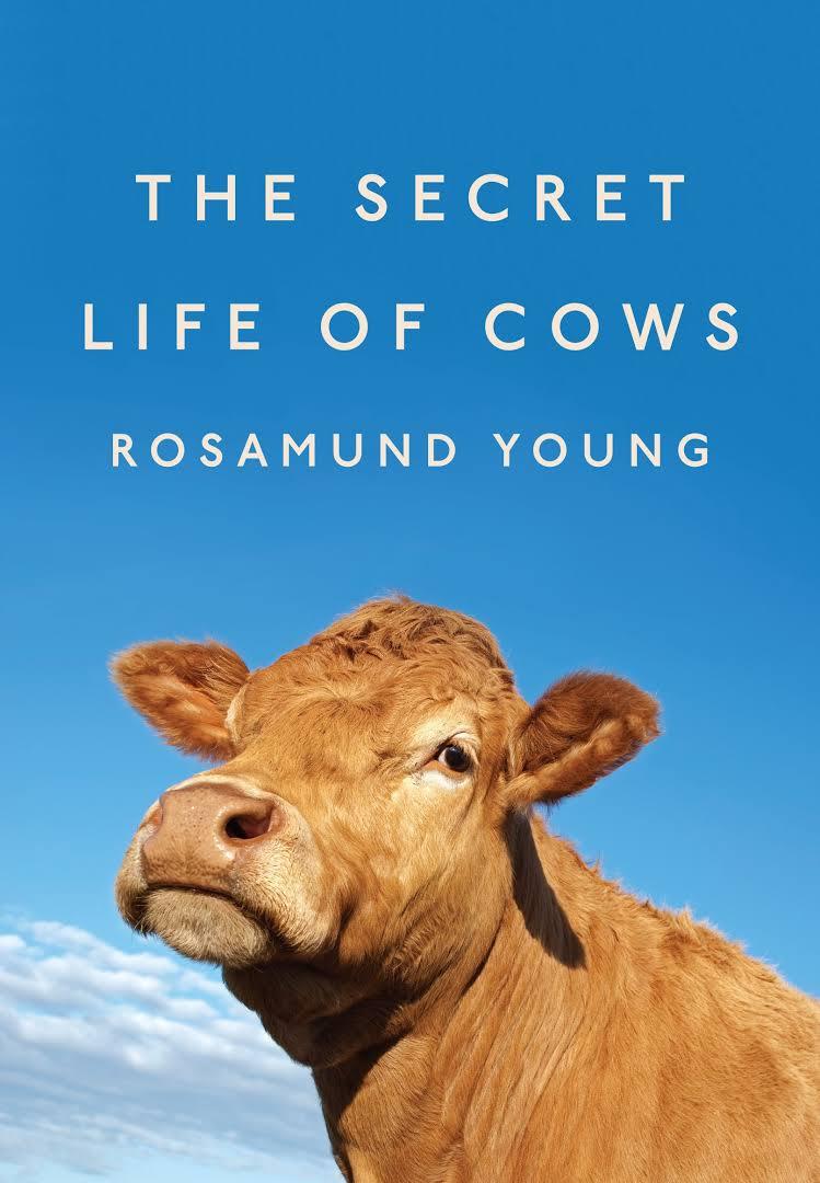 İNEKLERİN GİZLİ HAYATI/ THE SECRET LIFE OF COWS